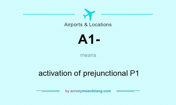What does A1- mean? It stands for activation of prejunctional P1