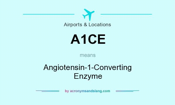 What does A1CE mean? It stands for Angiotensin-1-Converting Enzyme