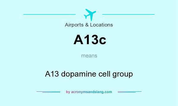 What does A13c mean? It stands for A13 dopamine cell group