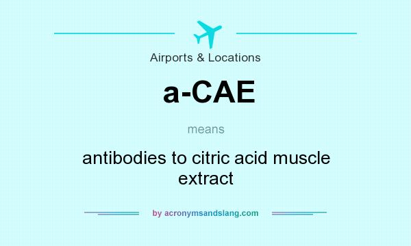 What does a-CAE mean? It stands for antibodies to citric acid muscle extract
