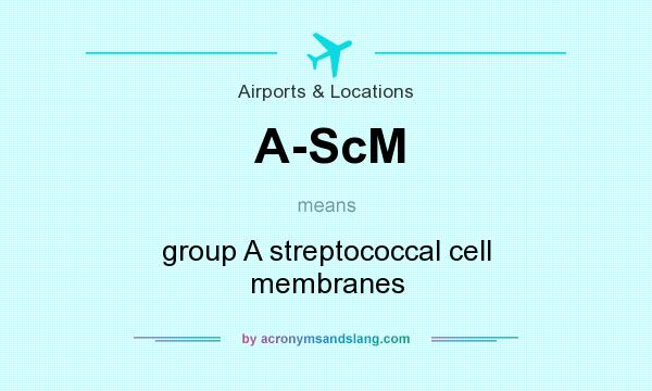 What does A-ScM mean? It stands for group A streptococcal cell membranes