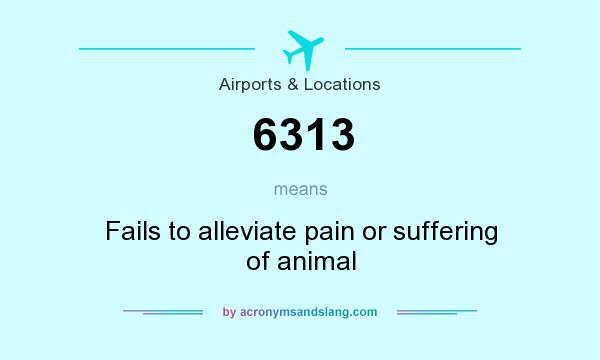 What does 6313 mean? It stands for Fails to alleviate pain or suffering of animal
