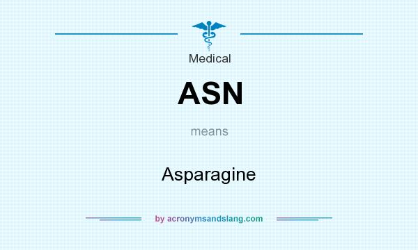 What does ASN mean? It stands for Asparagine