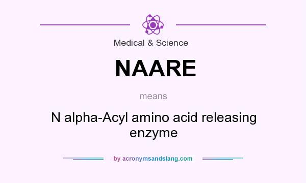 What does NAARE mean? It stands for N alpha-Acyl amino acid releasing enzyme