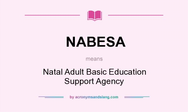 What does NABESA mean? It stands for Natal Adult Basic Education Support Agency