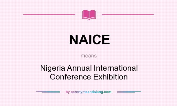 What does NAICE mean? It stands for Nigeria Annual International Conference Exhibition