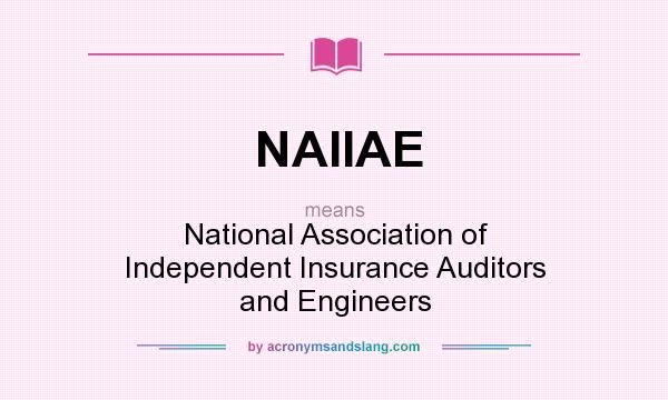 What does NAIIAE mean? It stands for National Association of Independent Insurance Auditors and Engineers