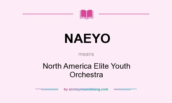 What does NAEYO mean? It stands for North America Elite Youth Orchestra