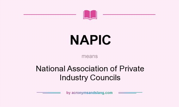 What does NAPIC mean? It stands for National Association of Private Industry Councils