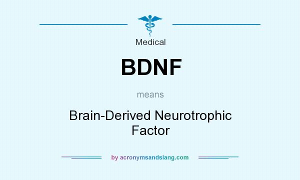 What does BDNF mean? It stands for Brain-Derived Neurotrophic Factor