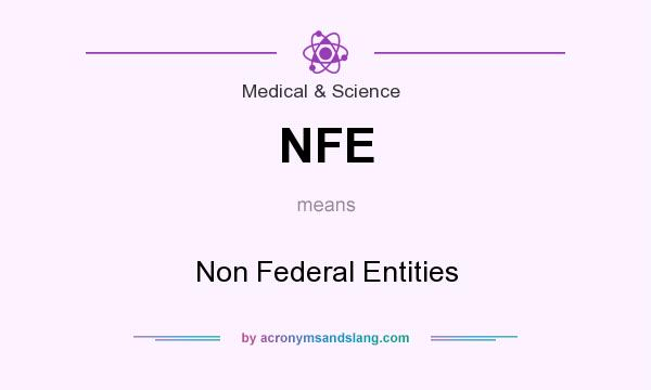 What does NFE mean? It stands for Non Federal Entities