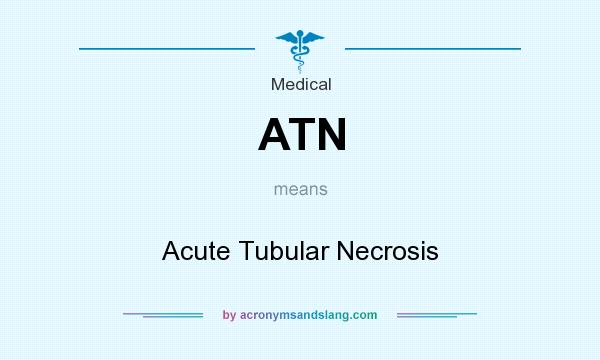 What does ATN mean? It stands for Acute Tubular Necrosis