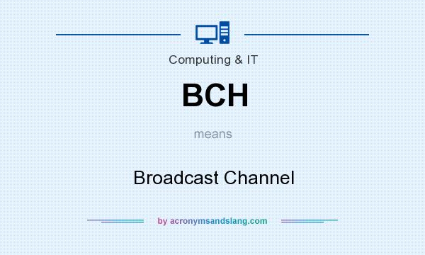 What does BCH mean? It stands for Broadcast Channel