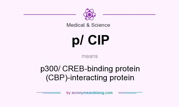 What does p/ CIP mean? It stands for p300/ CREB-binding protein (CBP)-interacting protein