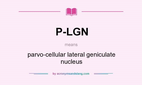 What does P-LGN mean? It stands for parvo-cellular lateral geniculate nucleus