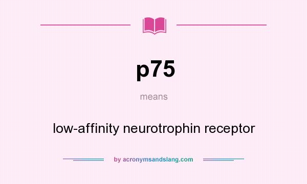 What does p75 mean? It stands for low-affinity neurotrophin receptor