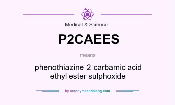 What does P2CAEES mean? It stands for phenothiazine-2-carbamic acid ethyl ester sulphoxide