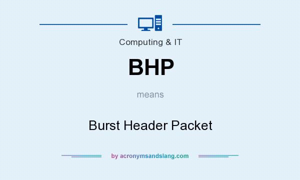 What does BHP mean? It stands for Burst Header Packet