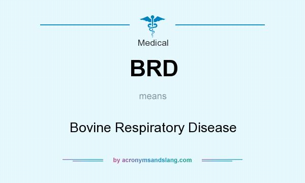 What does BRD mean? It stands for Bovine Respiratory Disease