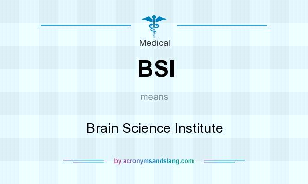 What does BSI mean? It stands for Brain Science Institute
