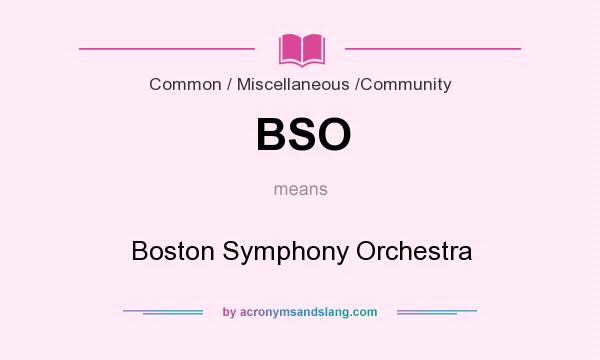 What does BSO mean? It stands for Boston Symphony Orchestra