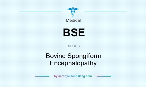 What does BSE mean? It stands for Bovine Spongiform Encephalopathy