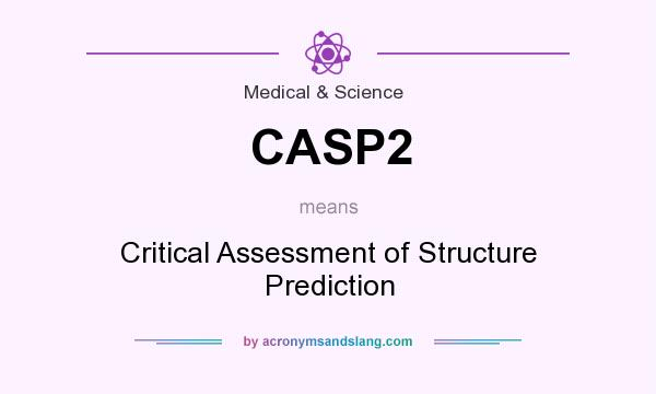 What does CASP2 mean? It stands for Critical Assessment of Structure Prediction
