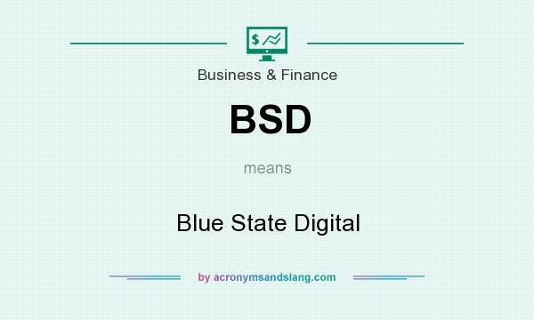 What does BSD mean? It stands for Blue State Digital