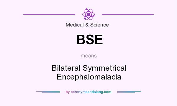 What does BSE mean? It stands for Bilateral Symmetrical Encephalomalacia