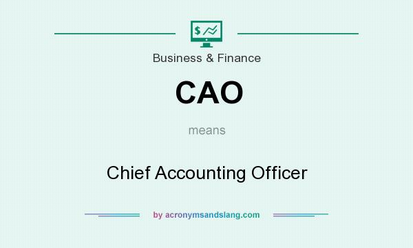What does CAO mean? It stands for Chief Accounting Officer