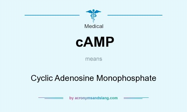 What does cAMP mean? It stands for Cyclic Adenosine Monophosphate
