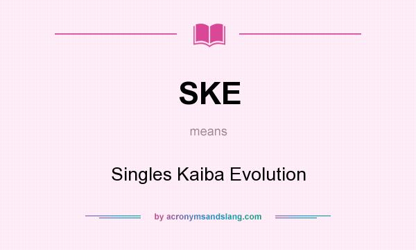 What does SKE mean? It stands for Singles Kaiba Evolution