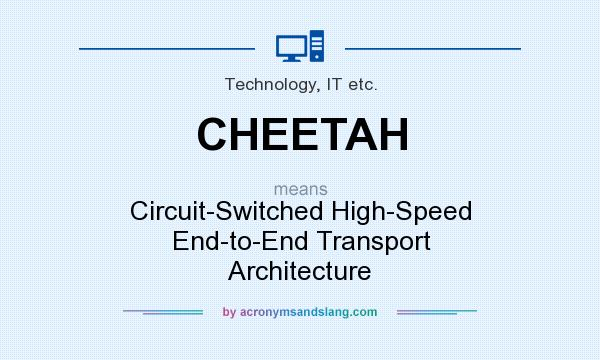 What does cheetah mean definition of cheetah cheetah for What does architecture mean