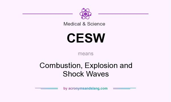 What does CESW mean? It stands for Combustion, Explosion and Shock Waves