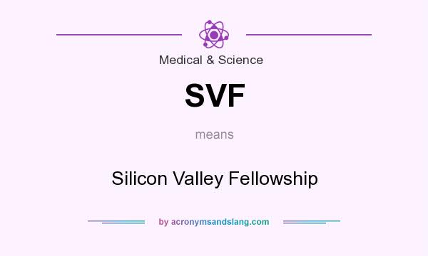 What does SVF mean? It stands for Silicon Valley Fellowship