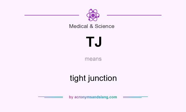 What does TJ mean? It stands for tight junction