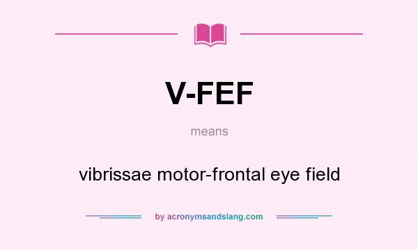 What does V-FEF mean? It stands for vibrissae motor-frontal eye field