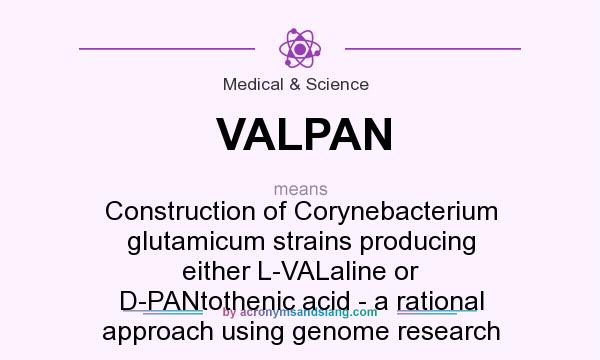 What does VALPAN mean? It stands for Construction of Corynebacterium glutamicum strains producing either L-VALaline or D-PANtothenic acid - a rational approach using genome research