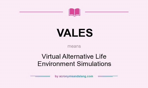 What does VALES mean? It stands for Virtual Alternative Life Environment Simulations