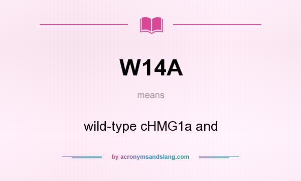 What does W14A mean? It stands for wild-type cHMG1a and