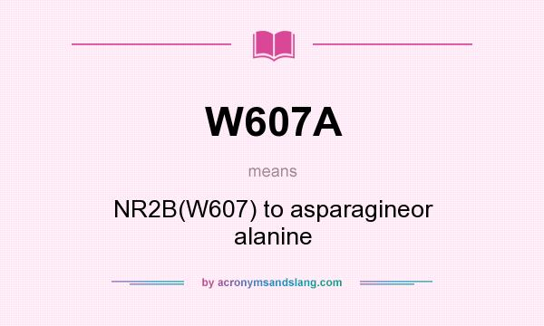 What does W607A mean? It stands for NR2B(W607) to asparagineor alanine