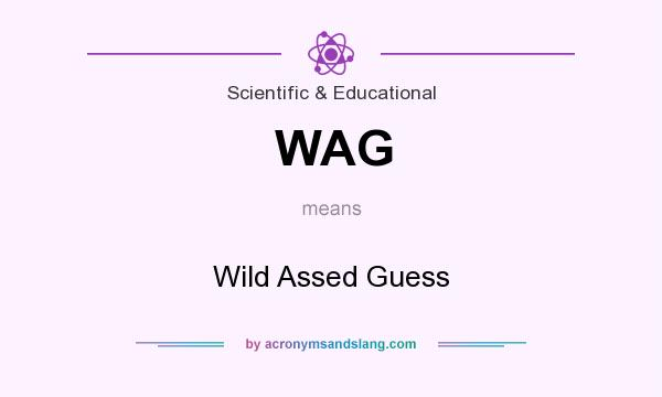 What does WAG mean? It stands for Wild Assed Guess