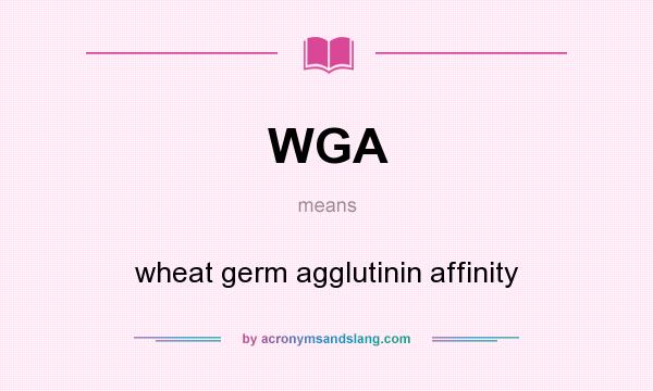 What does WGA mean? It stands for wheat germ agglutinin affinity