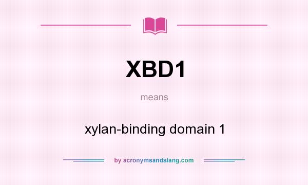 What does XBD1 mean? It stands for xylan-binding domain 1