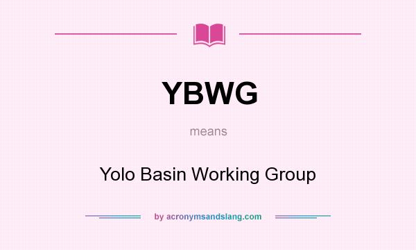 What does YBWG mean? It stands for Yolo Basin Working Group