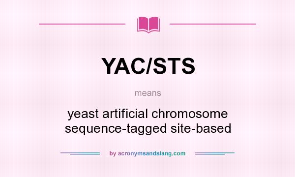 What does YAC/STS mean? It stands for yeast artificial chromosome sequence-tagged site-based