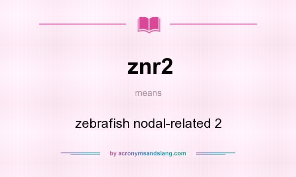 What does znr2 mean? It stands for zebrafish nodal-related 2