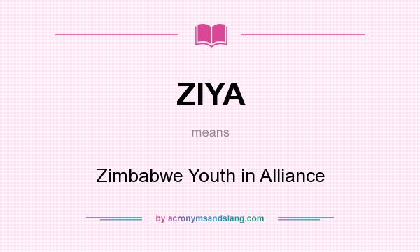 What does ZIYA mean? It stands for Zimbabwe Youth in Alliance