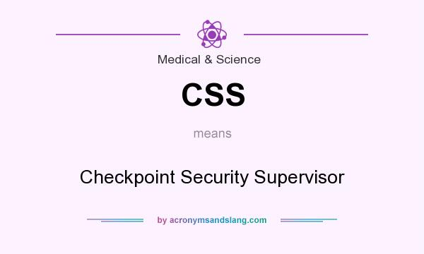 What does CSS mean? It stands for Checkpoint Security Supervisor