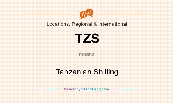 What does TZS mean? It stands for Tanzanian Shilling